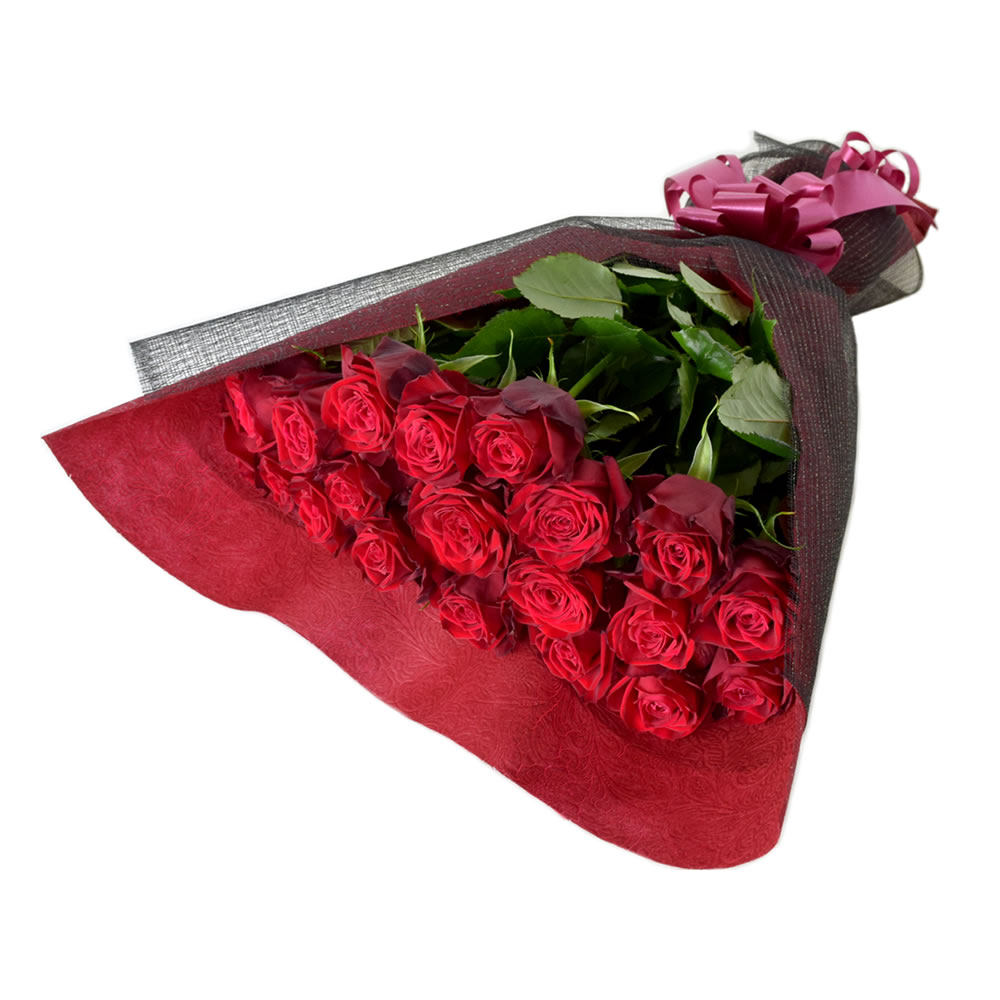 アマダ 赤薔薇 50cm 20本