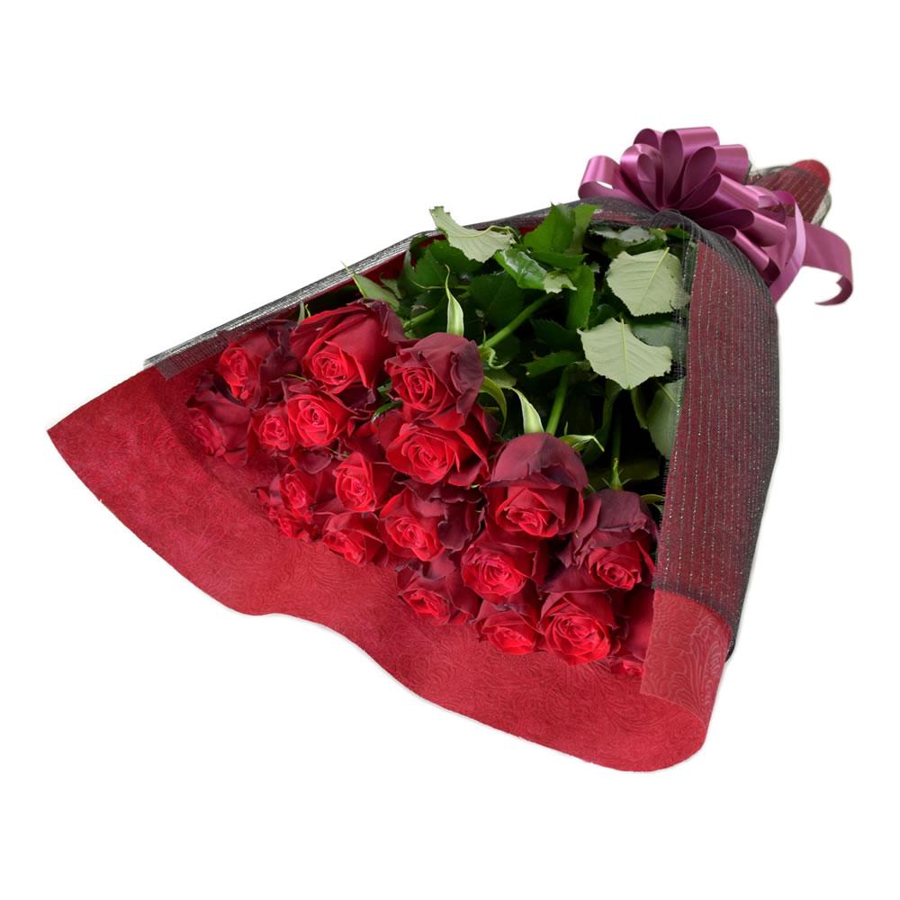 アマダ 赤バラ 60cm 20本